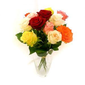 1 Dutzend Rosen bunt